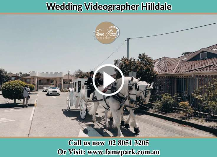 The Wedding Carriage Hilldale NSW 2420