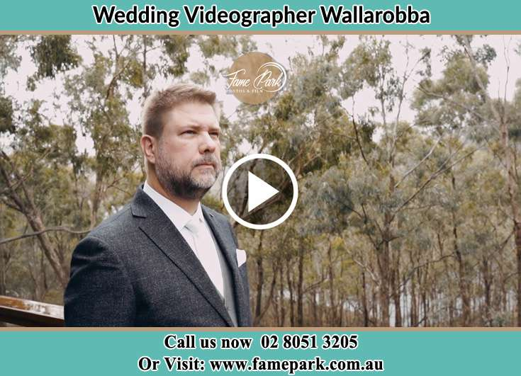 Wallarobba NSW 2420